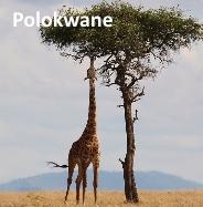 Polokwane